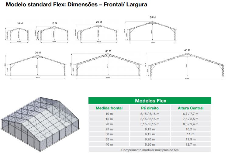 modelo standard flex